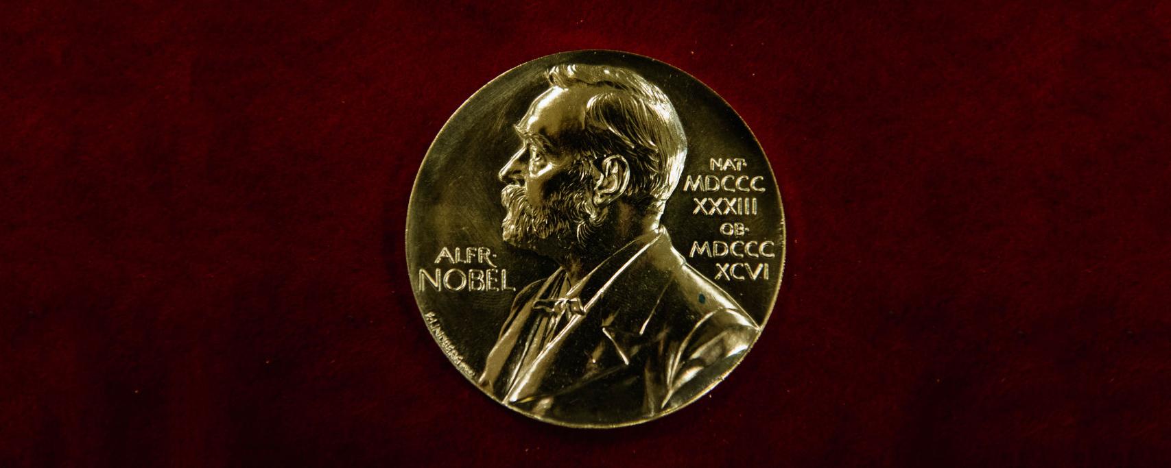 The Sveriges Riksbank Prize in Economic Sciences in Memory of Alfred Nobel